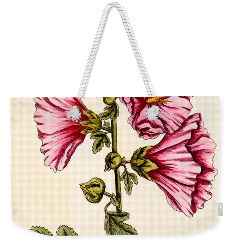 Still-life Weekender Tote Bag featuring the painting Hollyhocks by Elizabeth Blackwell