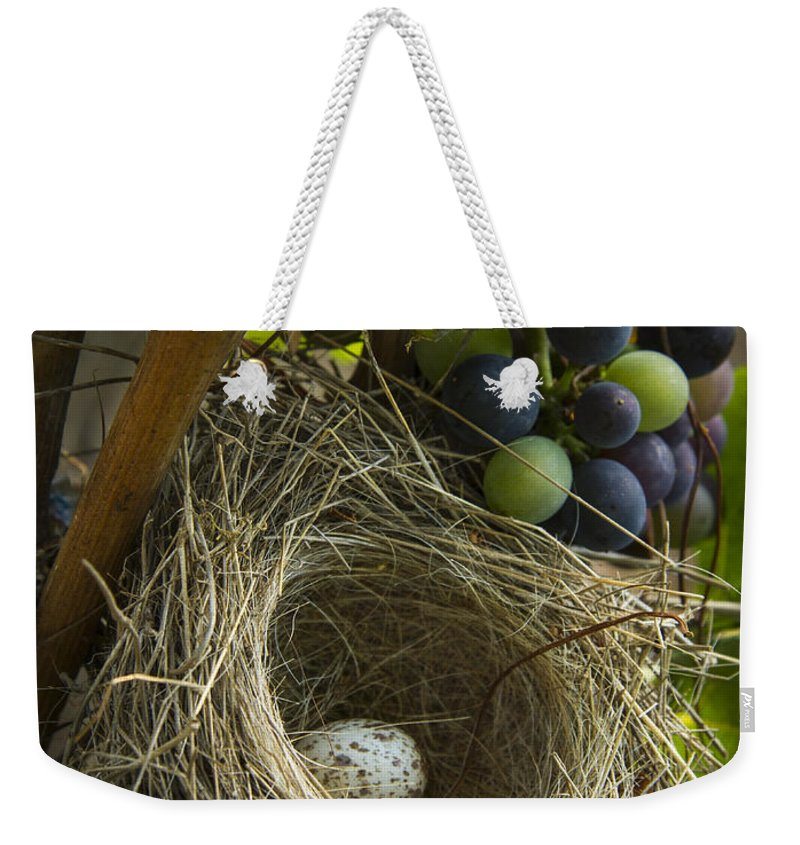 Vineyard Weekender Tote Bag featuring the photograph Home Alone by Jean Noren