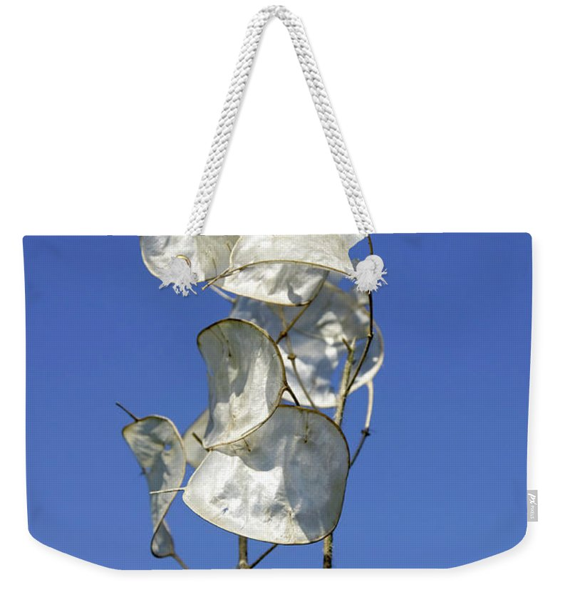 Drakelow Weekender Tote Bag featuring the photograph Honesty Seed Pods by Rod Johnson
