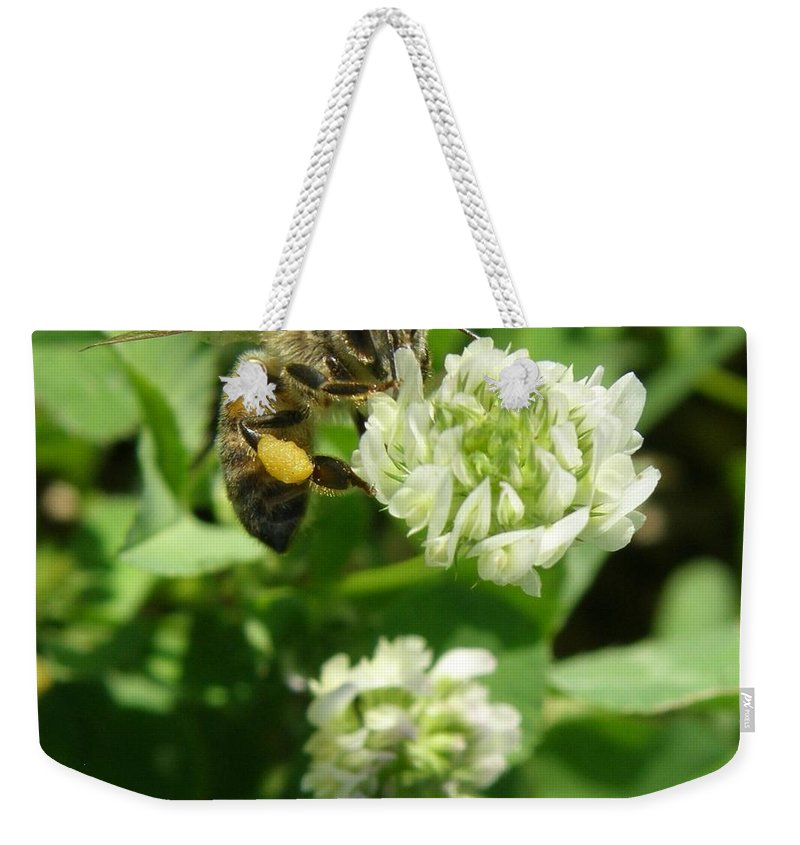 Macro Weekender Tote Bag featuring the photograph Honey And Clover by Caryl J Bohn