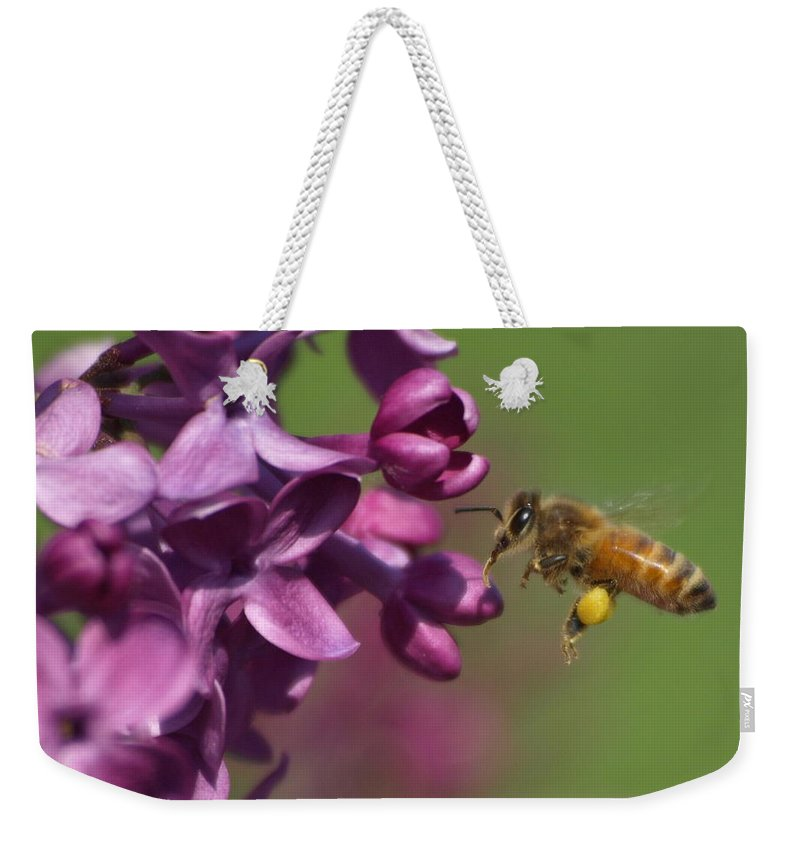 Jim Weekender Tote Bag featuring the photograph Honey Bee And Lilac by James Peterson
