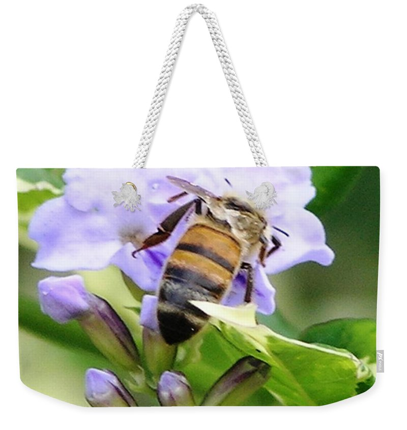 Purple Flower Weekender Tote Bag featuring the photograph Honey Bee On Lavender Flower by Mary Deal