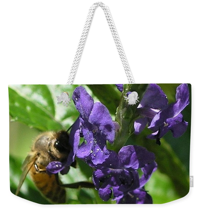 Purple Weekender Tote Bag featuring the photograph Honey Bee On Purple Flower by Mary Deal