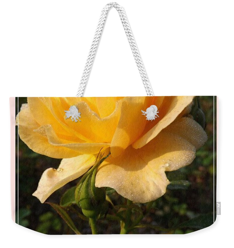 Beauty Weekender Tote Bag featuring the photograph Honey Perfume 2 by Sara Raber