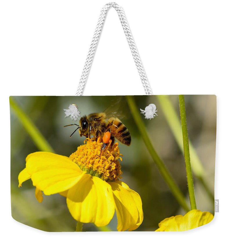Honeybee Weekender Tote Bag featuring the photograph Honeybee Feasting On Nectar Of Yellow Flower by Michael Moriarty