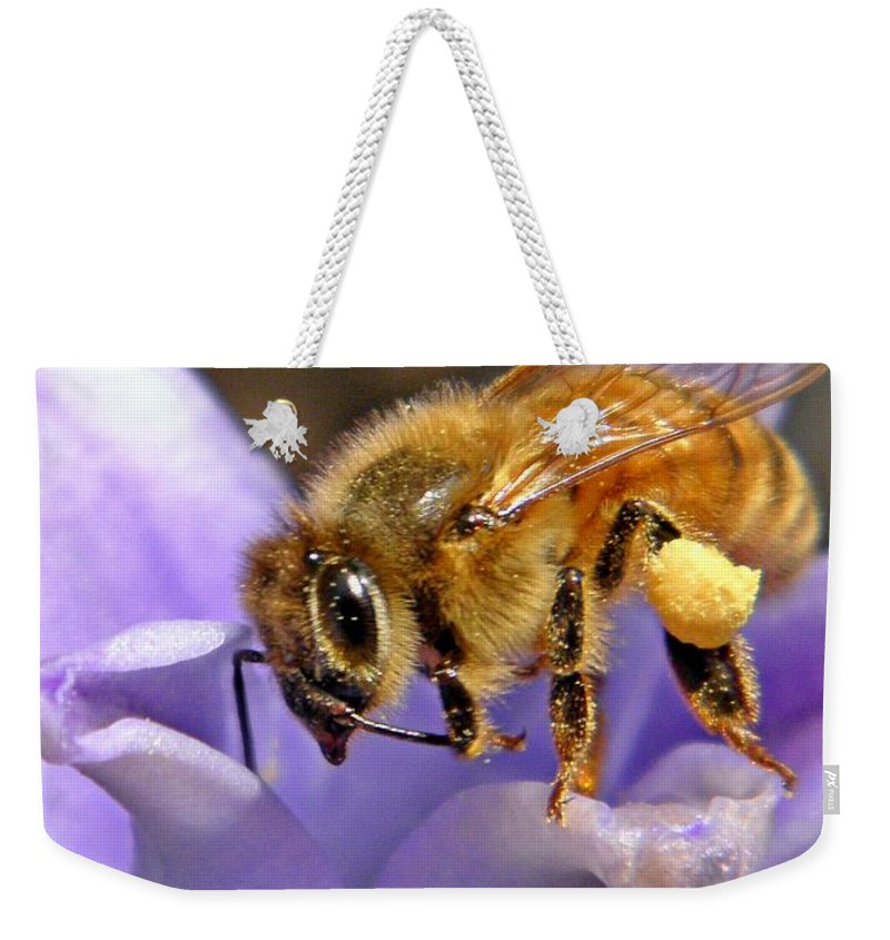 Insect Weekender Tote Bag featuring the photograph Honeybee On Hyacinth by Chris Berry