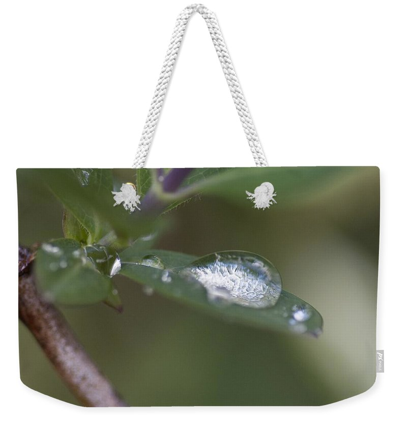 Honeysuckle Weekender Tote Bag featuring the photograph Honeysuckle Drop Cloud by Richard Thomas