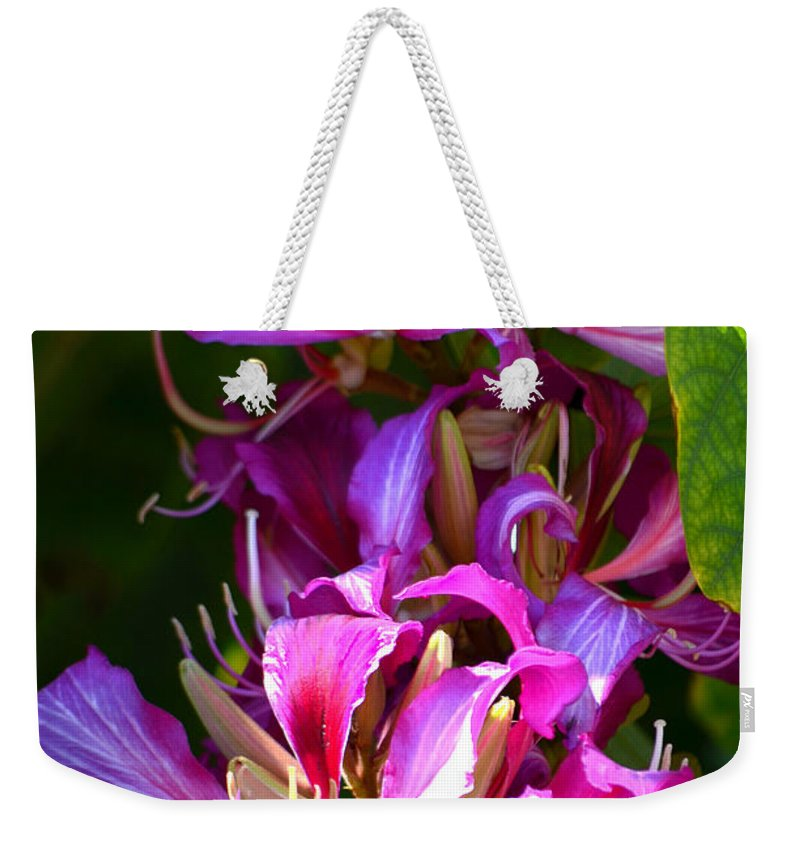 Hong Kong Orchid Weekender Tote Bag featuring the photograph Hong Kong Orchid by Deb Halloran