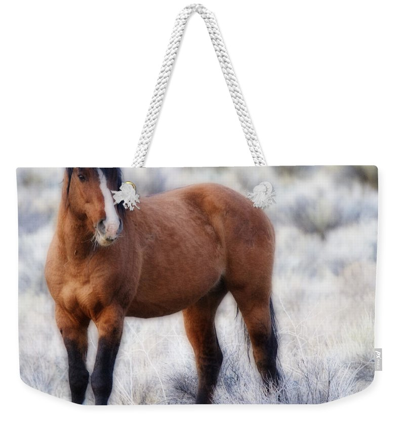Honor Weekender Tote Bag featuring the photograph Honor by Wes and Dotty Weber