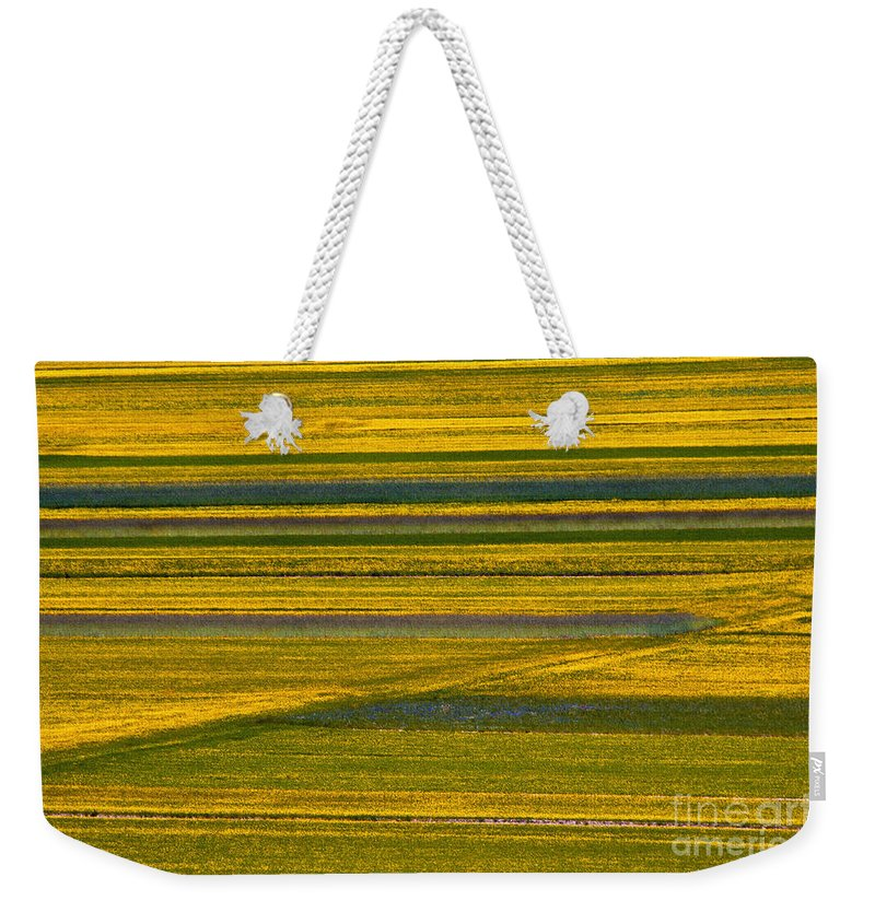 Piano Grande Umbria Italy Flower Flowers Wildflower Wildflowers Landscape Landscapes Weekender Tote Bag featuring the photograph Horizontal And Diagonal Streaks by Bob Phillips