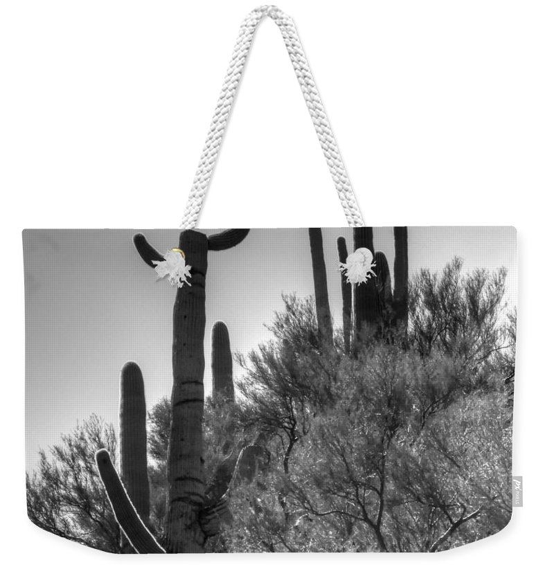 Black Weekender Tote Bag featuring the photograph Horn Saguaro Cactus by Tap On Photo