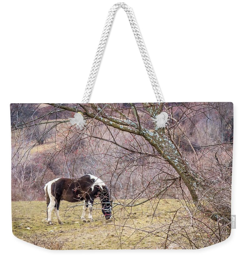 Winter Weekender Tote Bag featuring the photograph Horse And Winter Berries by DAC Photo