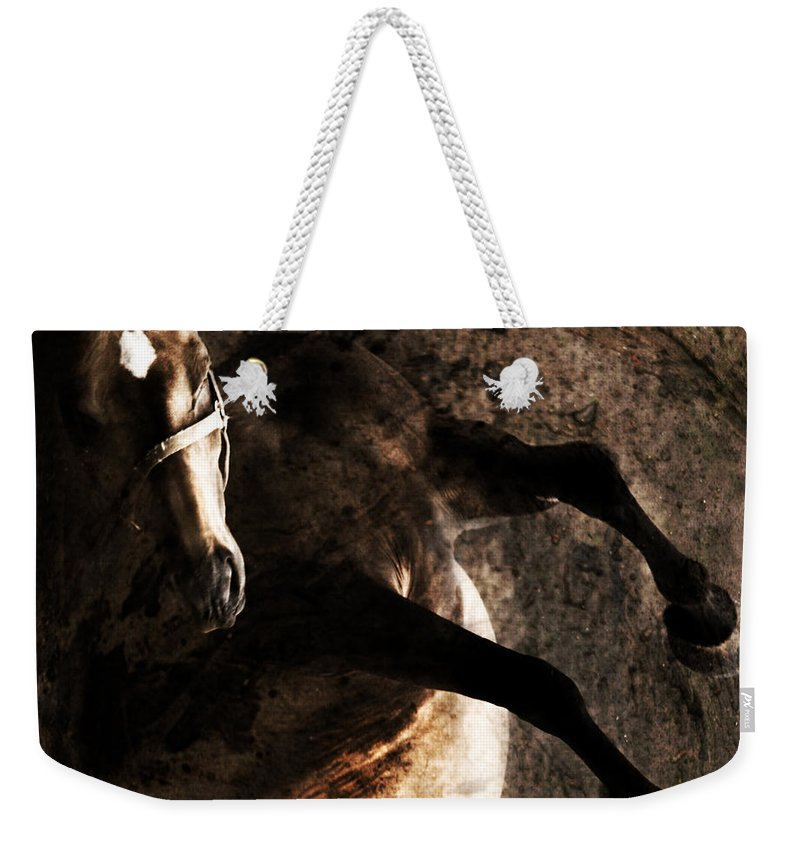 Horse Weekender Tote Bag featuring the photograph Horse Art by Angel Ciesniarska