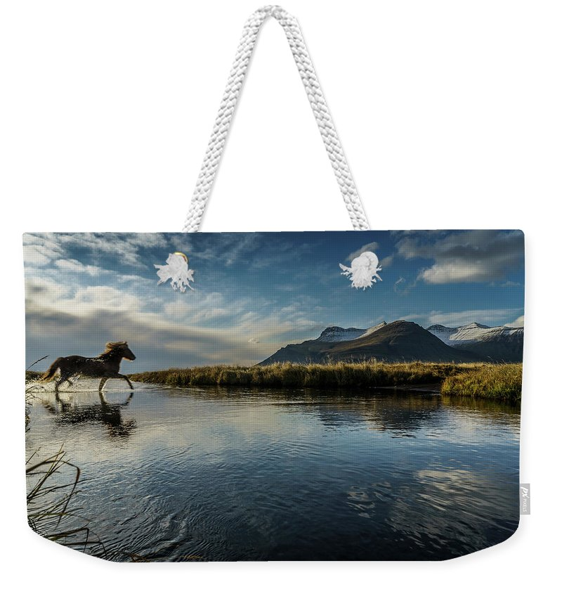 Majestic Weekender Tote Bag featuring the photograph Horse Crossing A River, Iceland by Arctic-images