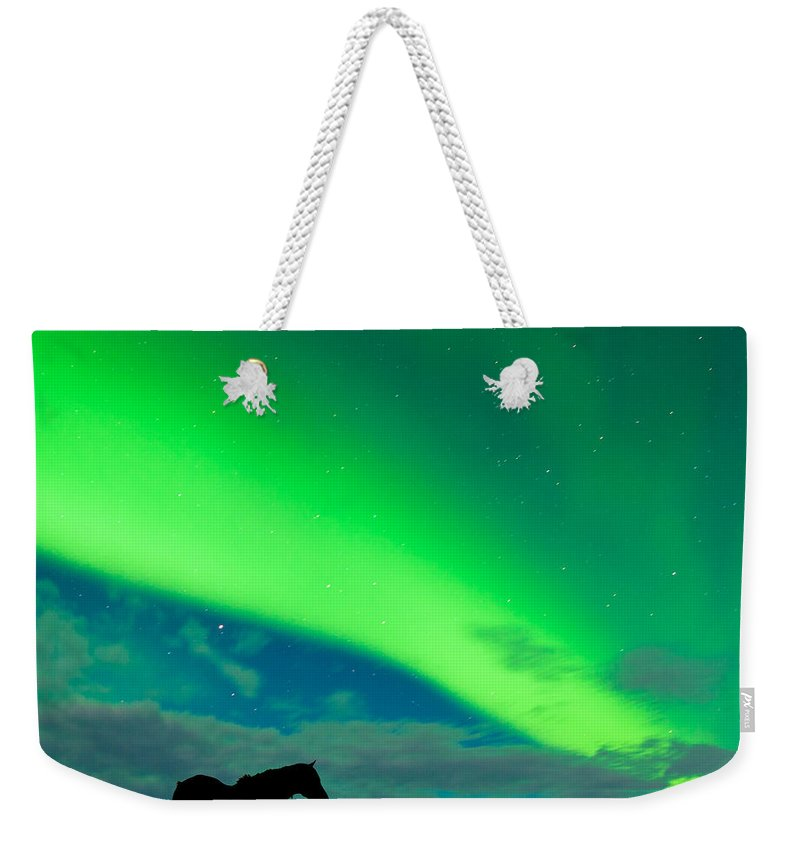 Alaska Weekender Tote Bag featuring the photograph Horse Distant Snowy Peaks With Northern Lights Sky by Stephan Pietzko