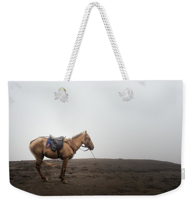 Horse Weekender Tote Bag featuring the photograph Horse On A Mountain On A Foggy Day by Carlina Teteris