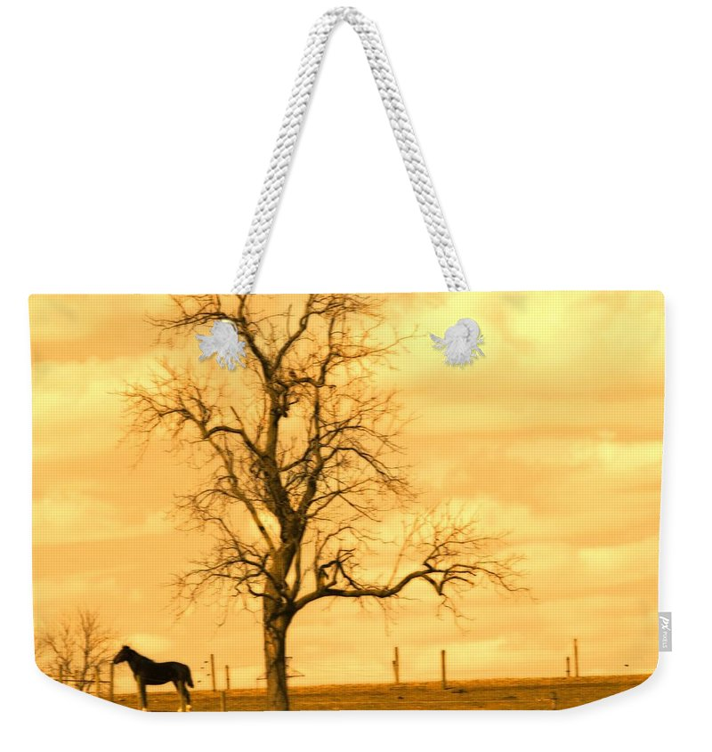 Horse Weekender Tote Bag featuring the photograph Horse On The Hill by Alice Gipson