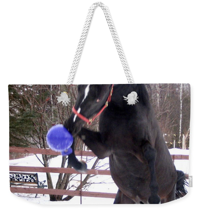 Horse Weekender Tote Bag featuring the photograph Horse Playing Ball by Line Gagne
