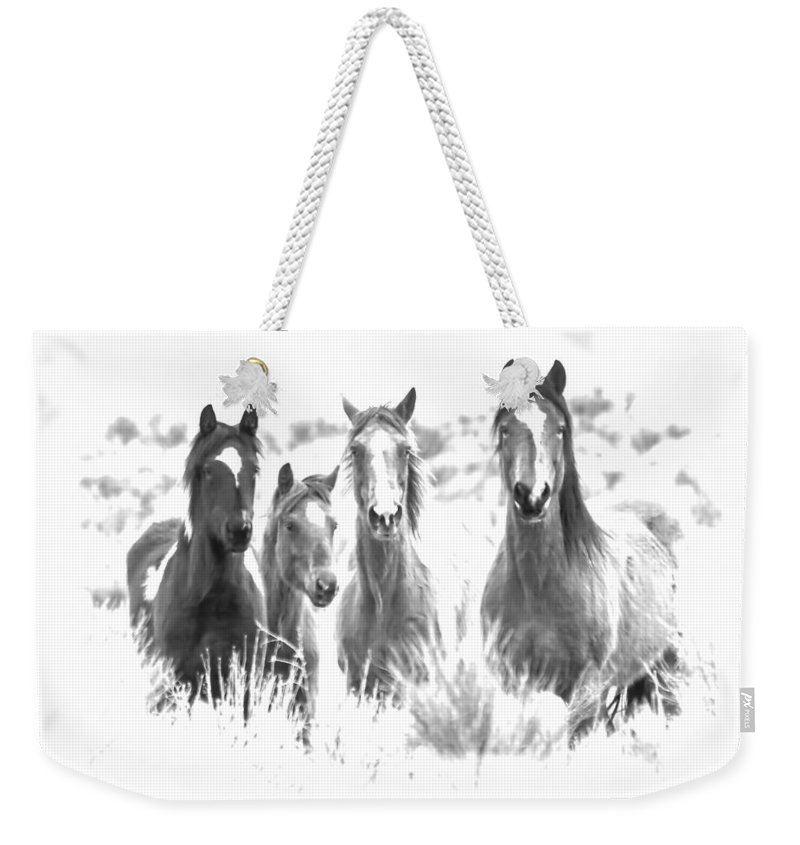 Horses Weekender Tote Bag featuring the photograph Breakfast Club by Athena Mckinzie