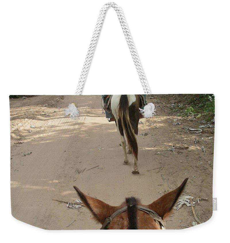 Horse Riding In The Pantenal Weekender Tote Bag featuring the digital art Horse Riding by Carol Ailles