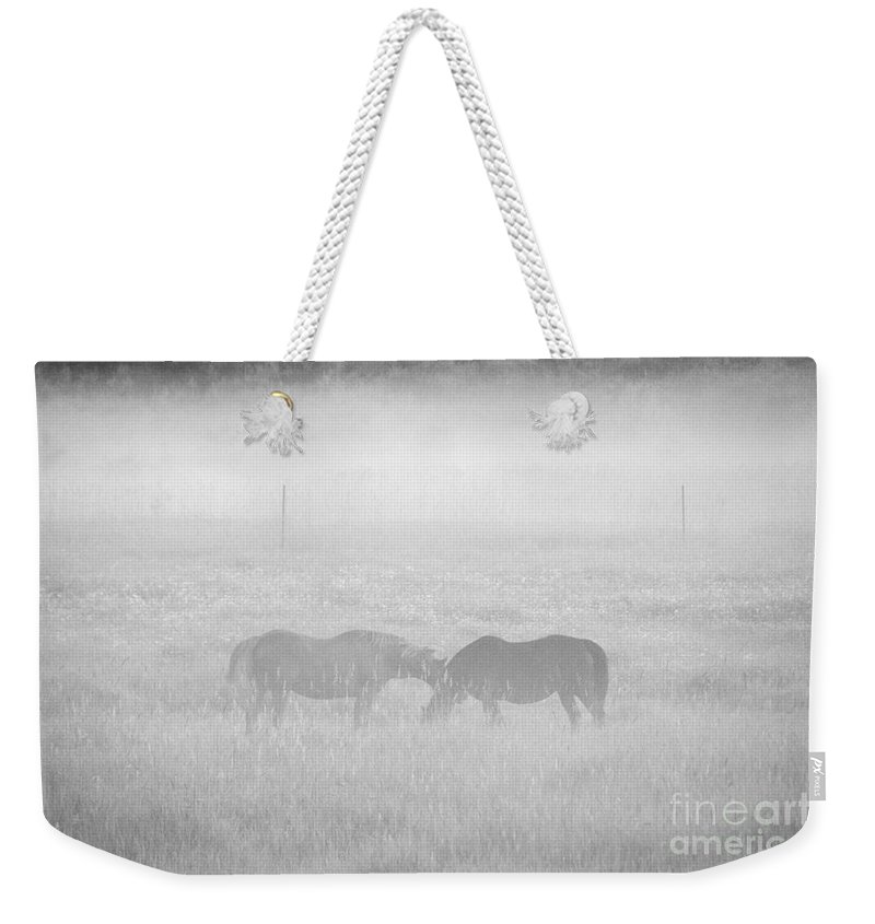 Landscape Weekender Tote Bag featuring the photograph Horses In The Fog by Cheryl Baxter