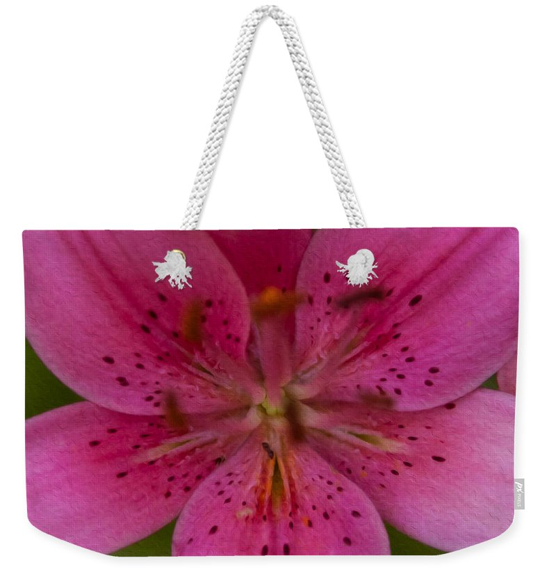 North Cascades Weekender Tote Bag featuring the painting Hot Pink Close Up by Omaste Witkowski