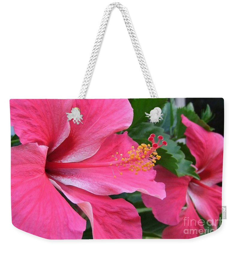 Pink Weekender Tote Bag featuring the photograph Hot Pink Hibiscus 2 by Mary Deal