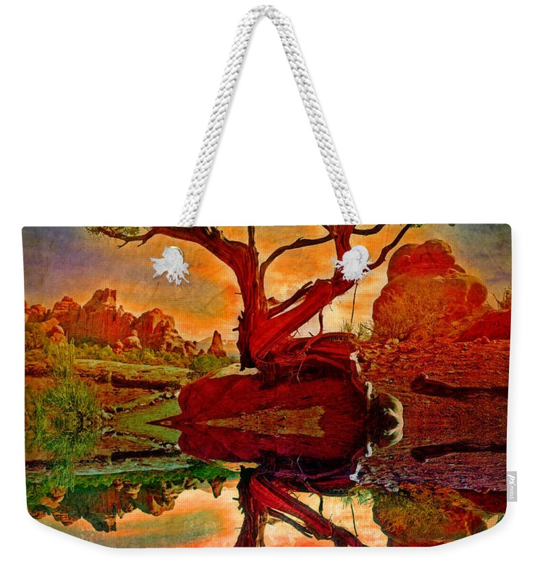 Tree Weekender Tote Bag featuring the photograph How One Tree Becomes Two by Tara Turner