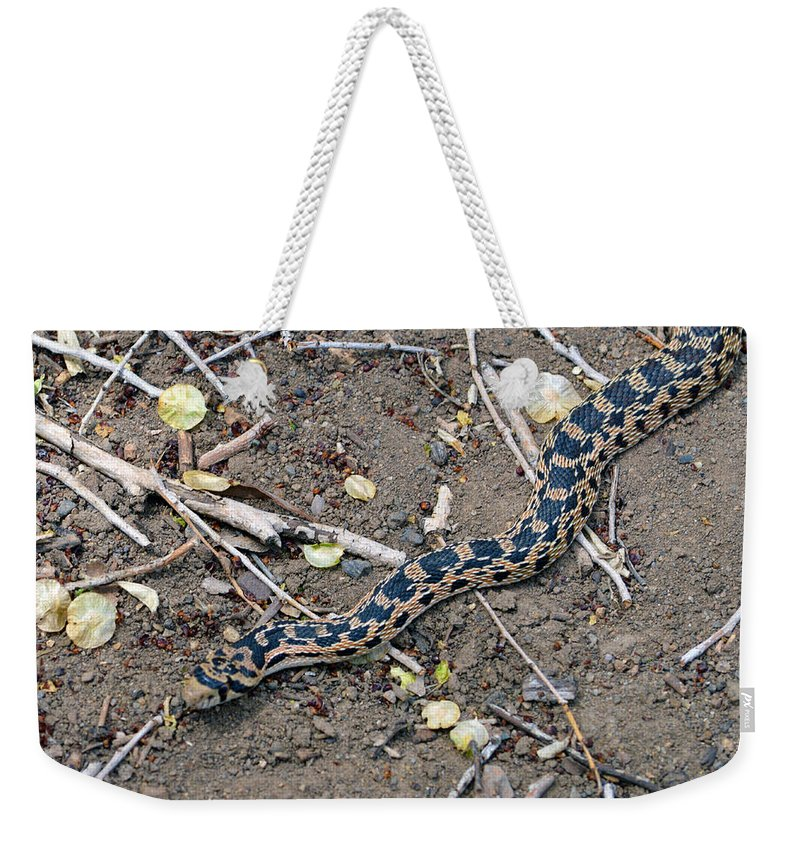 Snake Weekender Tote Bag featuring the photograph Hssssss by Brent Dolliver