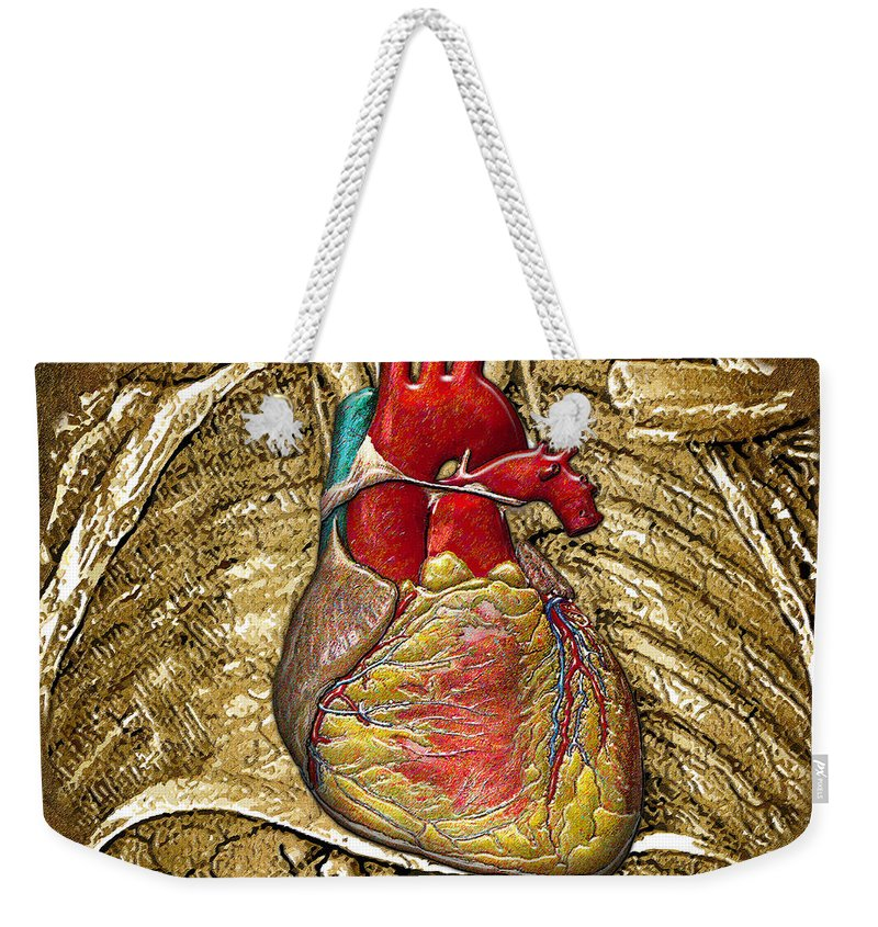 C7 Inner Workings 3d Collection Weekender Tote Bag featuring the digital art Human Heart Over Vintage Chart Of An Open Chest Cavity by Serge Averbukh