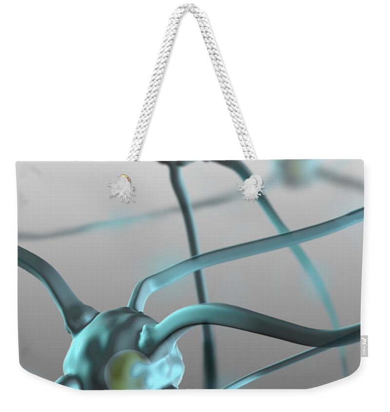 Science Weekender Tote Bag featuring the photograph Human Nerve Cells, Computer Artwork by Spencer Sutton