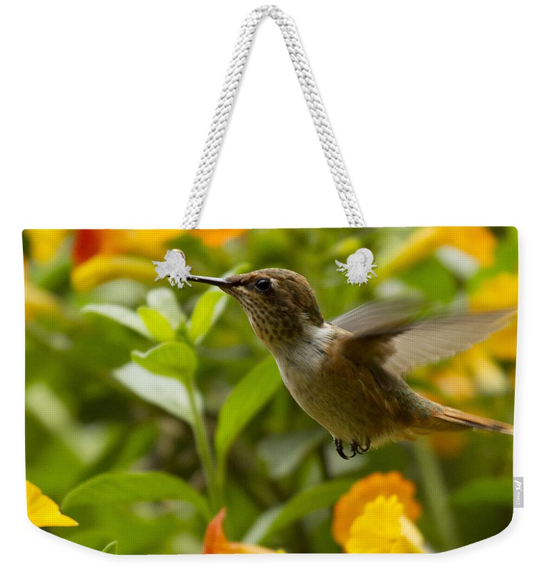 Bird Weekender Tote Bag featuring the photograph Hummingbird Looking For Food by Heiko Koehrer-Wagner