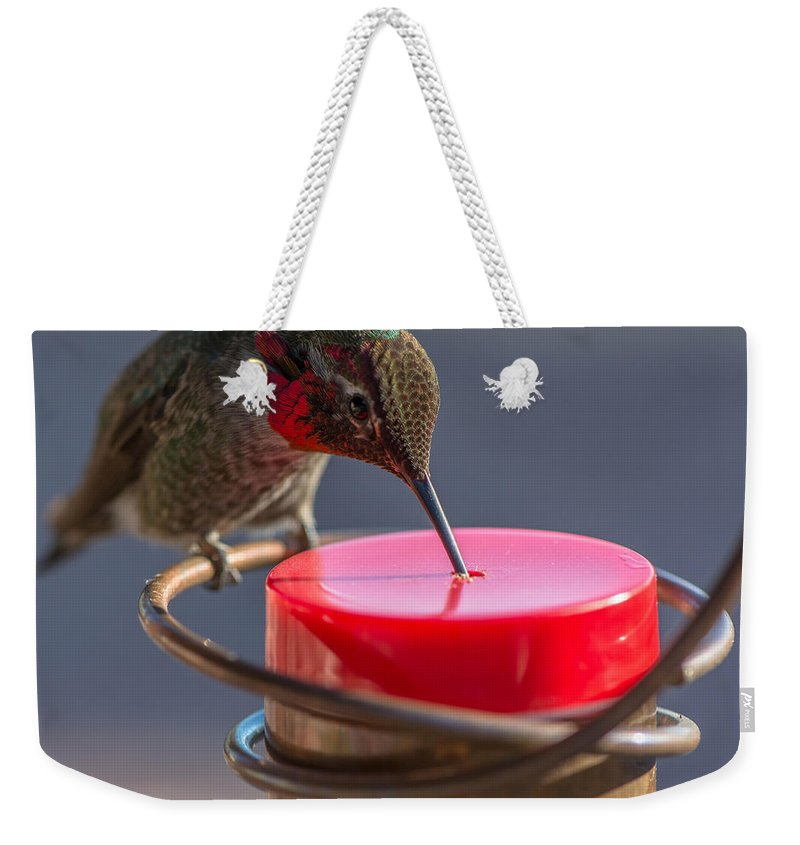 Close-up Weekender Tote Bag featuring the photograph Hummingbird On Feeder by Michael Moriarty