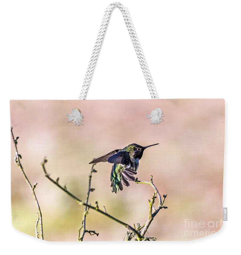 Anna's Weekender Tote Bag featuring the photograph Hummingbird Stretch by Kate Brown
