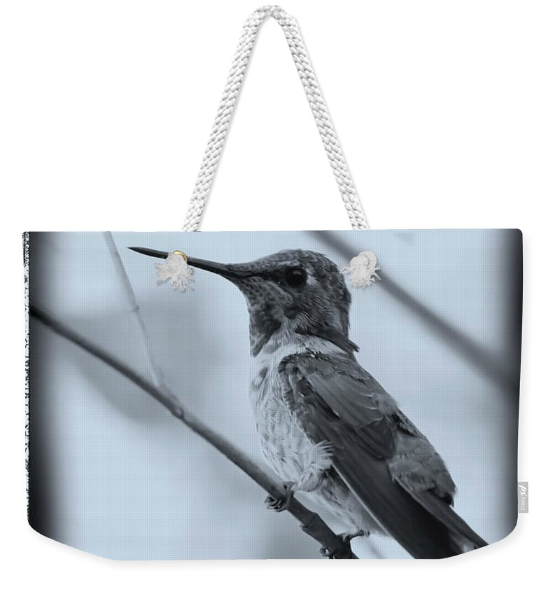 Hummingbird Weekender Tote Bag featuring the photograph Hummingbird With Old-fashioned Frame 1 by Carol Groenen