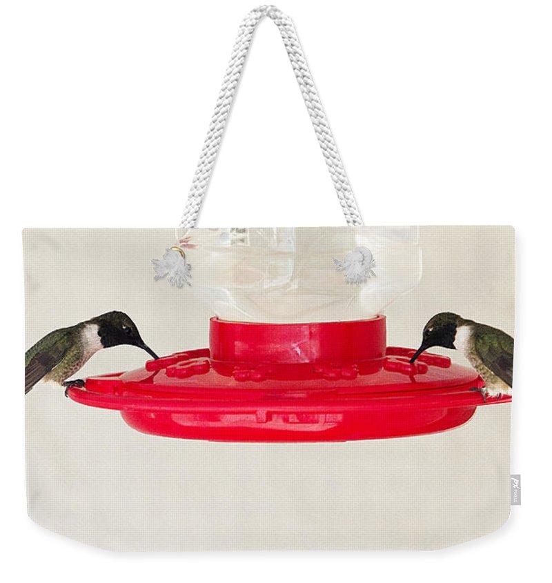 Hummingbirds Weekender Tote Bag featuring the photograph Hummingbirds Feeding by Peter Lloyd