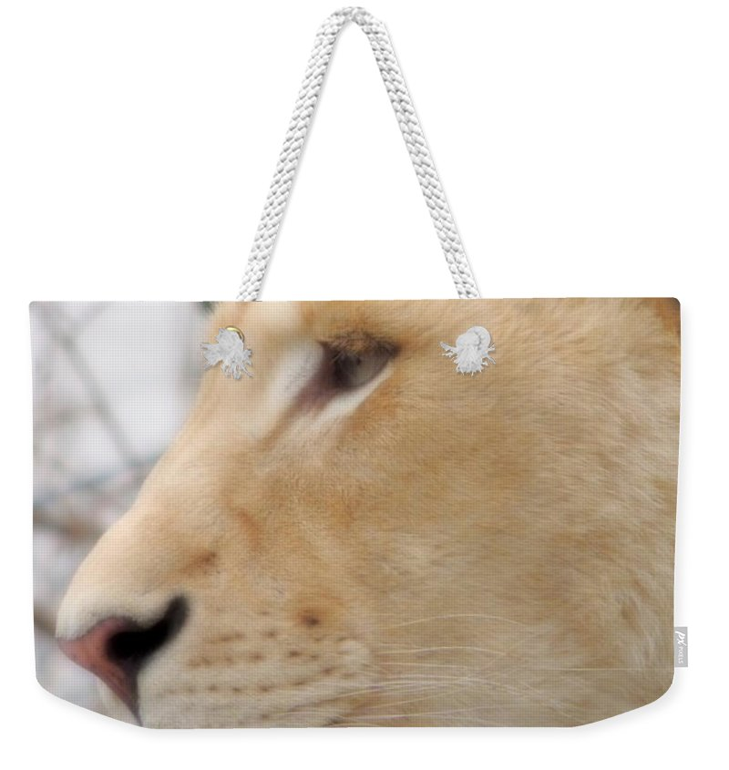 Hungry Weekender Tote Bag featuring the photograph Hungry by Munir Alawi