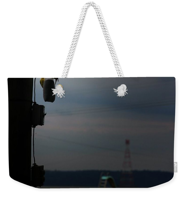 Birds Weekender Tote Bag featuring the photograph Hurry It's Gonna Rain by Robert McCubbin