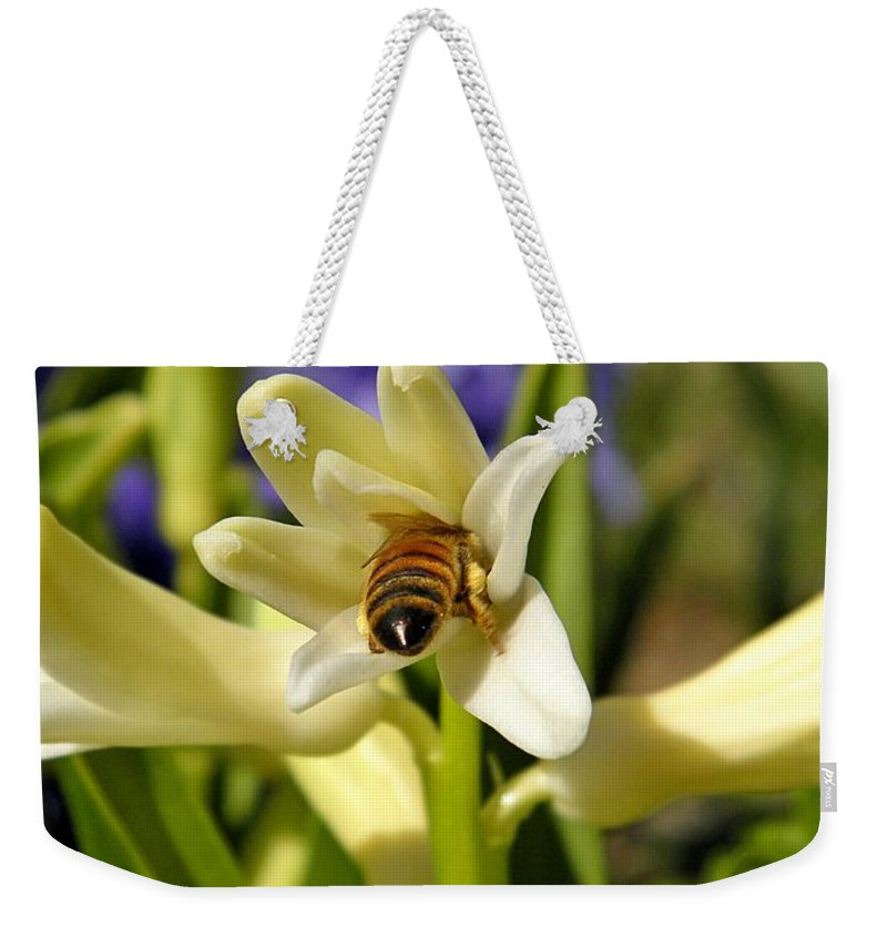 Insect Weekender Tote Bag featuring the photograph Hyacinth And Honeybee by Chris Berry