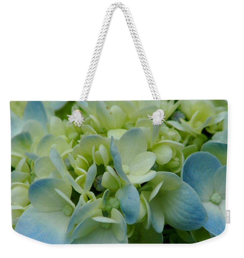 Flower Weekender Tote Bag featuring the photograph Hydrangea 2 by David Weeks
