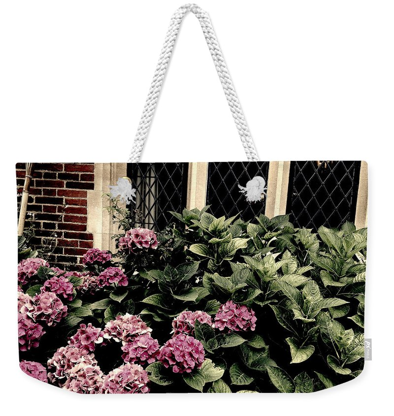 Photograph Weekender Tote Bag featuring the photograph Hydrangea Blossoms by Nicole Parks