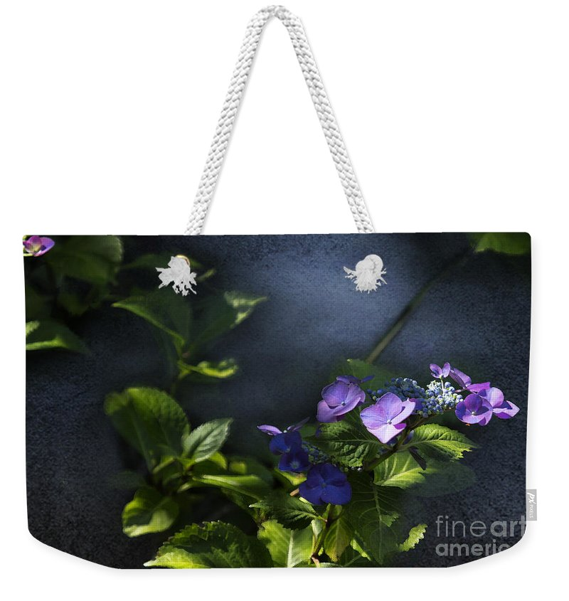 Hydrangea Weekender Tote Bag featuring the photograph Hydrangea Violet-blue by Belinda Greb