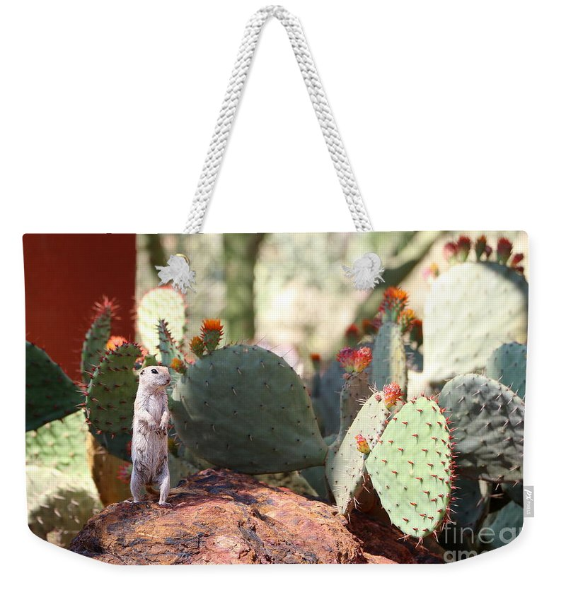 Ground Weekender Tote Bag featuring the photograph I Am Here by Christiane Schulze Art And Photography