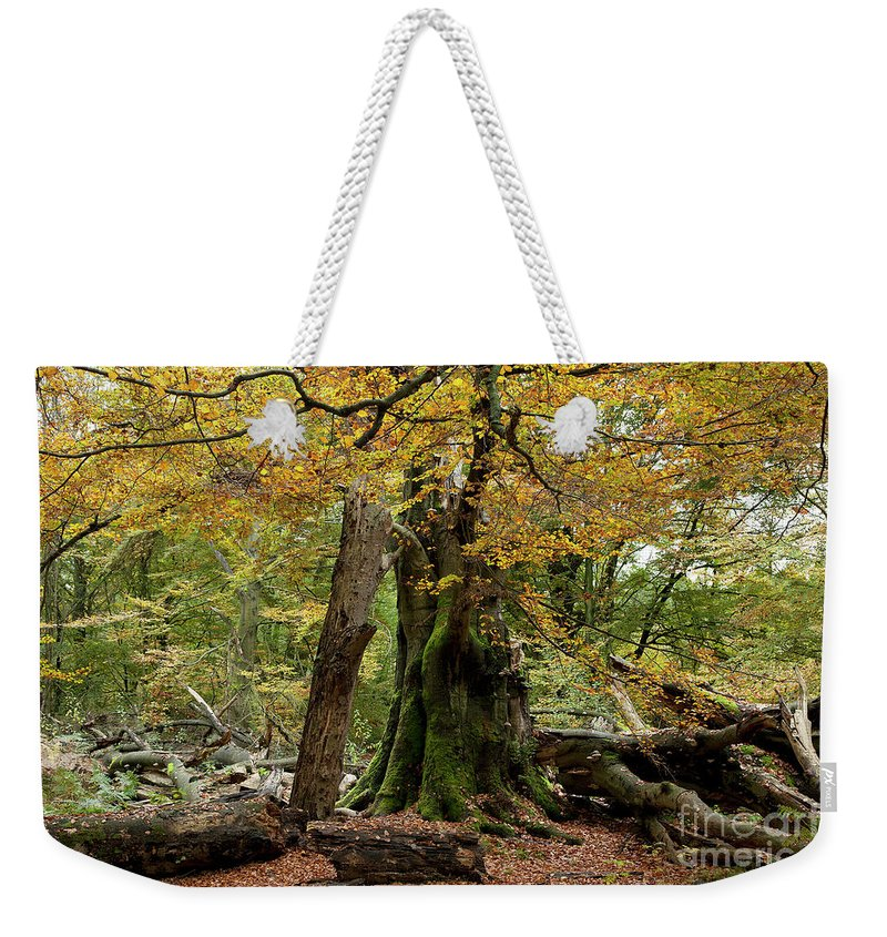 Europe Weekender Tote Bag featuring the photograph I Am Here Since Almost 1000 Years by Heiko Koehrer-Wagner