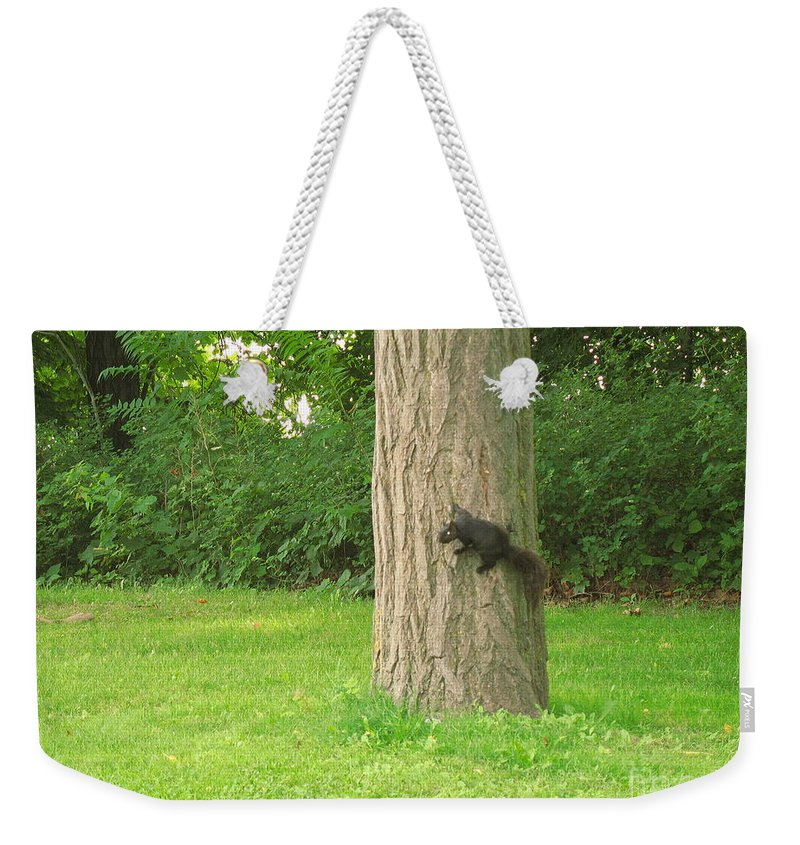 Small Animals Weekender Tote Bag featuring the photograph I Got It by Jeffery L Bowers