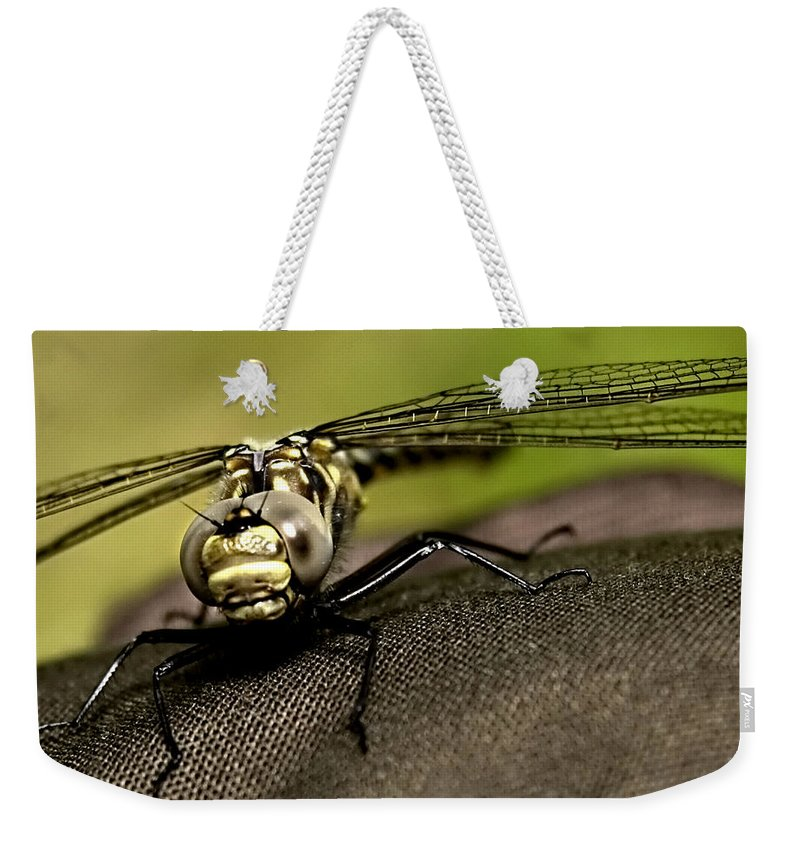 Dragon Fly Weekender Tote Bag featuring the photograph I See You by Gary Wightman