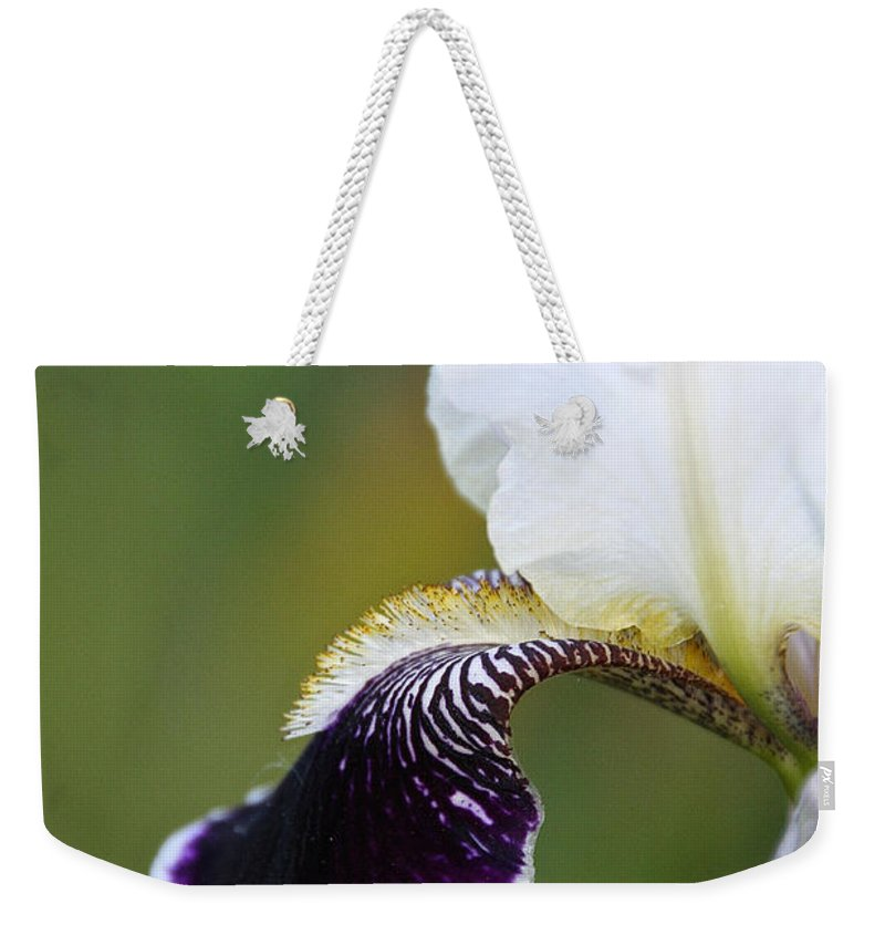 Flower Weekender Tote Bag featuring the photograph I Spy An Iris by Susan Herber