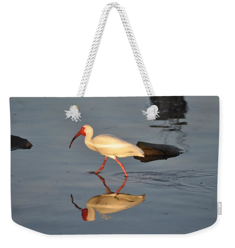 Ibis In Reflection Weekender Tote Bag featuring the photograph Ibis In Reflection by Bill Cannon