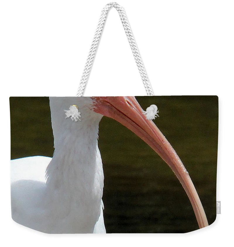 White Ibis Weekender Tote Bag featuring the photograph Ibis Portrait by Doris Potter