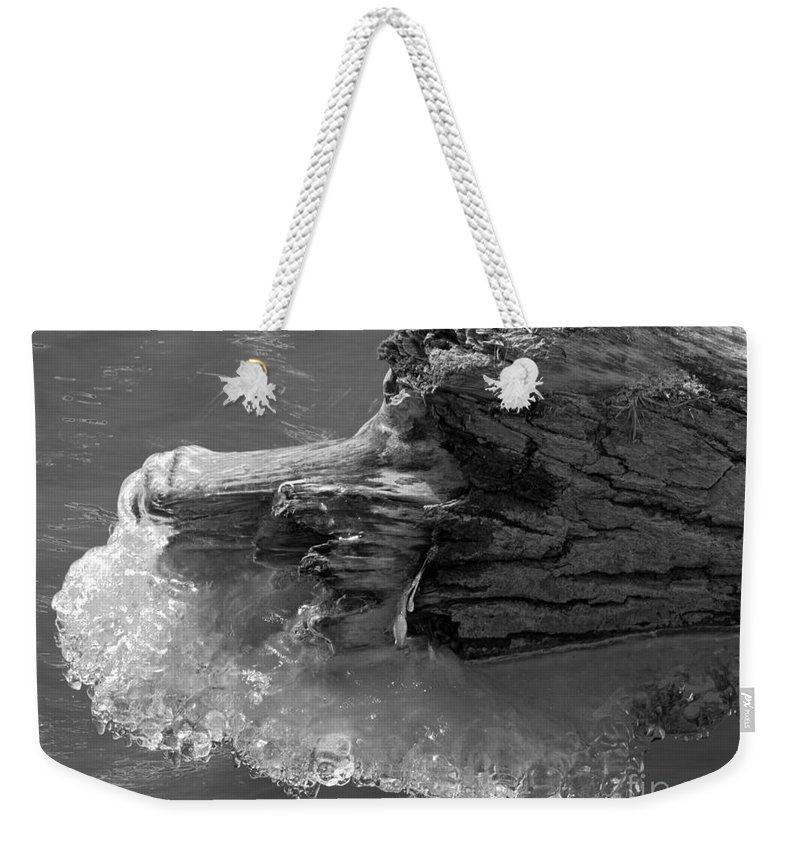 Ice Weekender Tote Bag featuring the photograph Ice Among The Floating Tree by Darleen Stry